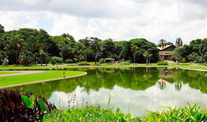 Jardim-Botânico-Plantarum-Viaje-com-a-Mix